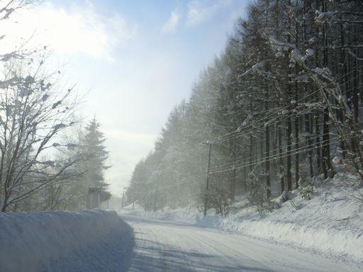 snow 12