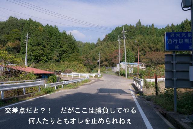 P1010504.jpg