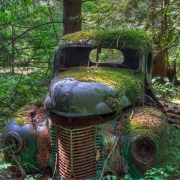 高年式のトラック