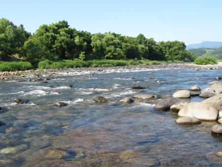 夏の川になりつつある