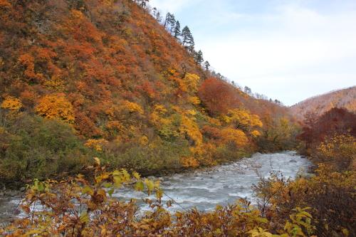 晩秋の山河