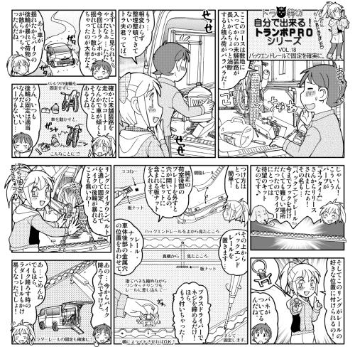 【ダートスポーツ】【トランポ】1