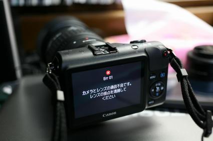 IMG_4928.jpg