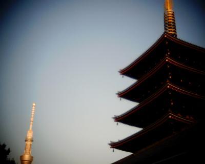 オープンした東京スカイツリーと五重塔:Entry
