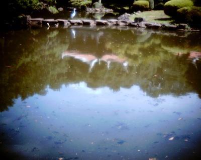 池に映るダイサギと旧御涼亭:Entry