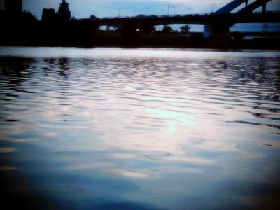 染まる多摩川:Entry