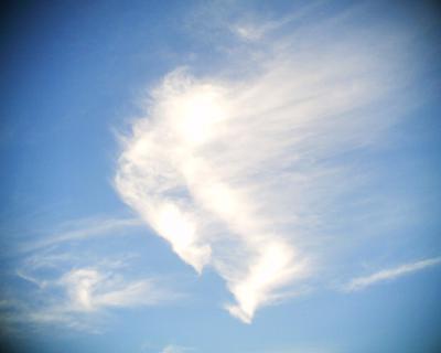 空翔ける雲:R2