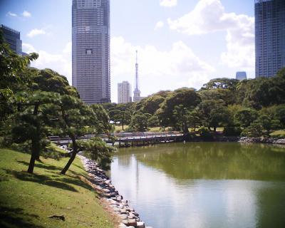 東京タワーを襲う雲:R2