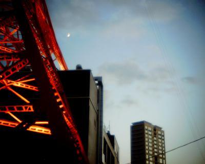 東京タワーの脚と月見:Entry