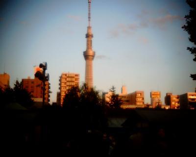 夕日に焼ける東京スカイツリー:Entry