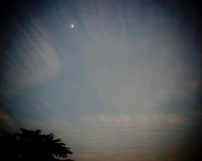 雲に漂う月:Entry