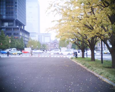 東京駅とイチョウ:R2