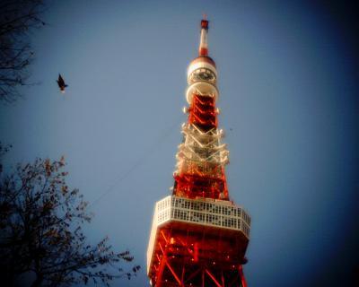 風に舞う葉と東京タワー:Entry