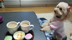 お茶の時間です2