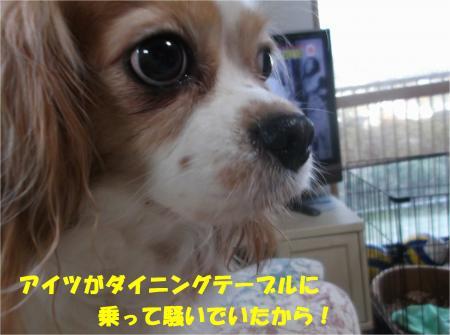 02_convert_20141128180447.jpg