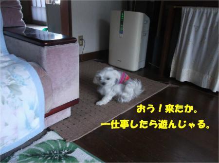 02_convert_20141205180618.jpg