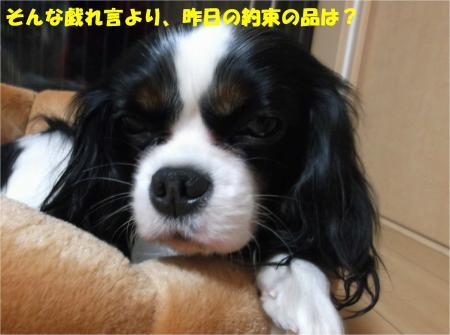 02_convert_20141210173241.jpg