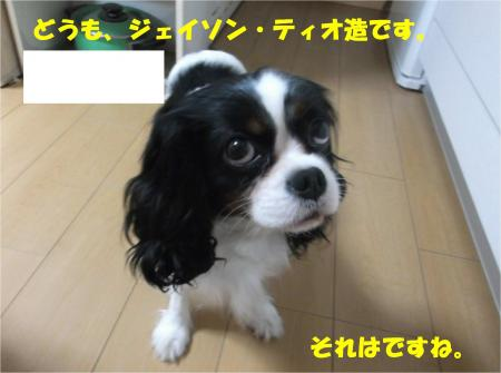 03_convert_20141128180456.jpg