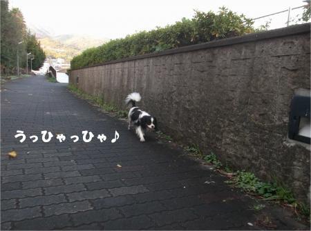 03_convert_20141202180310.jpg