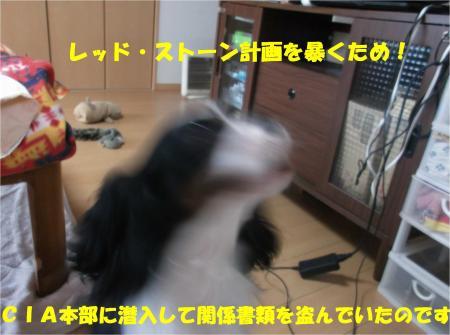 04_convert_20141128180505.jpg