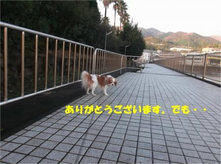 04_convert_20141202180321.jpg