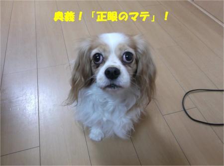 04_convert_20141210173310.jpg