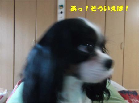 04_convert_20141219183216.jpg