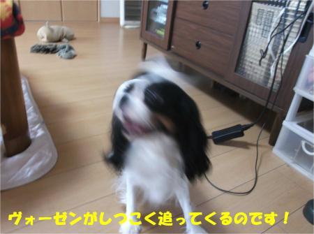 05_convert_20141128180514.jpg