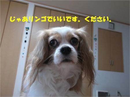 05_convert_20141209181604.jpg