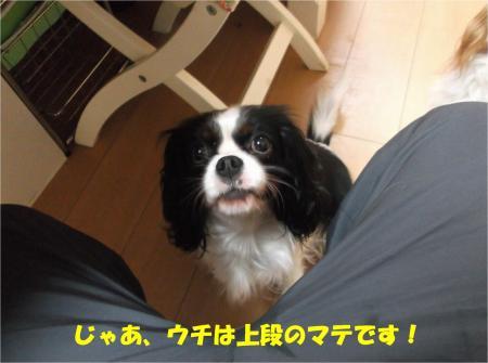05_convert_20141210173259.jpg