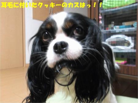 05_convert_20141216180624.jpg