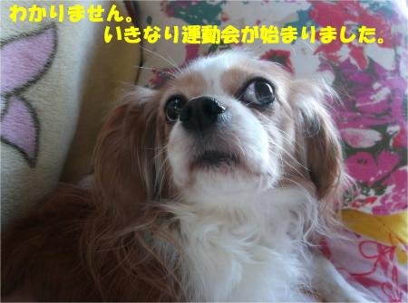 05_convert_20141218172925.jpg