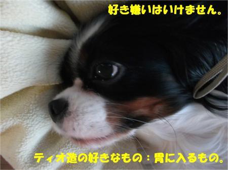 07_convert_20141203182717.jpg