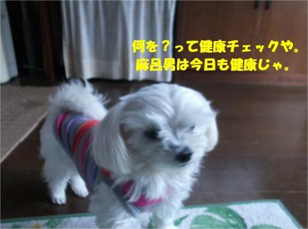 07_convert_20141205180655.jpg