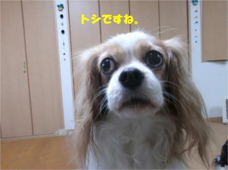 07_convert_20141208173201.jpg