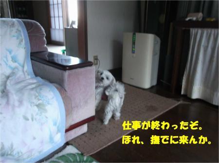 08_convert_20141205180706.jpg