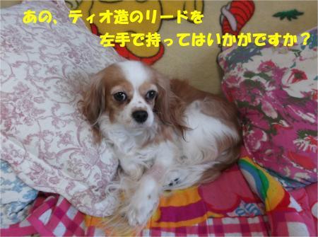 08_convert_20141217183656.jpg