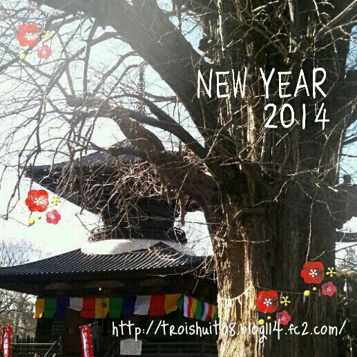 fc2_2014-01-05_18-26-32-356.jpg