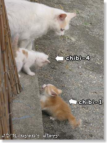 chibi1_2