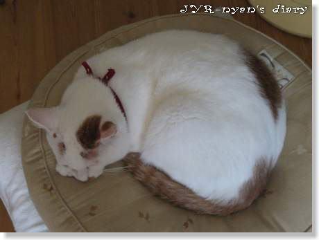 daichi121003_2