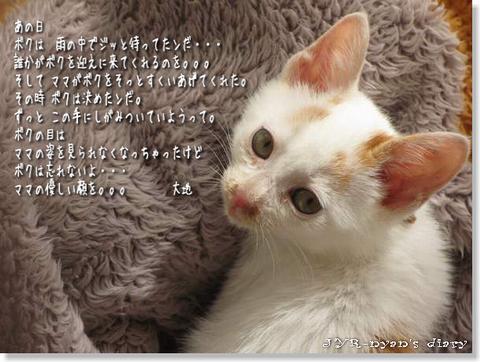 daichi121004_2