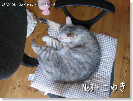 koyuki120913