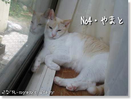 yamato120913