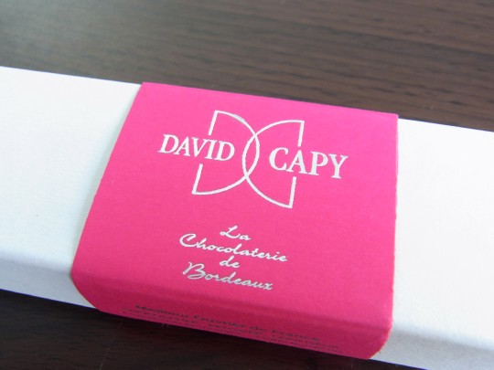 David Capy01
