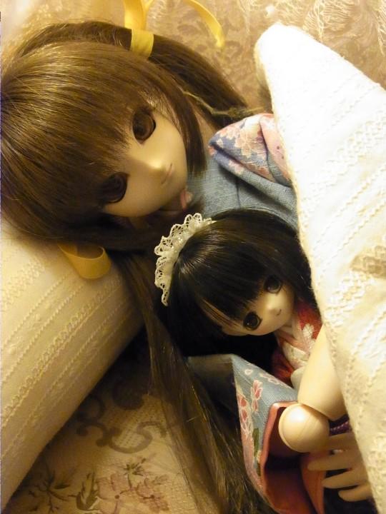 れんげ ベッド12