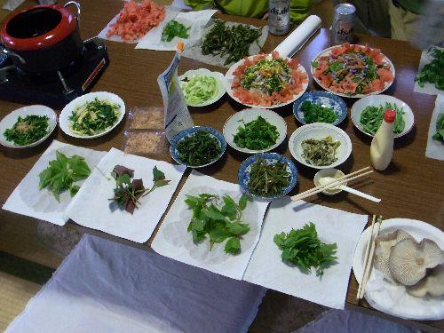 山菜パラダイス