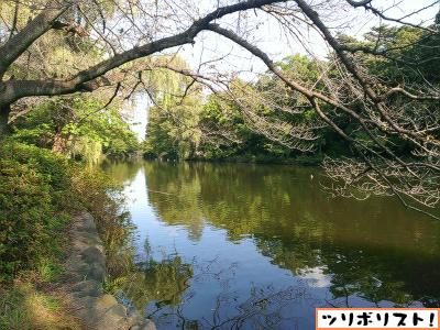 石神井公園004