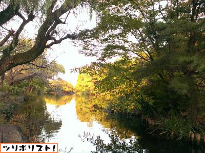 石神井公園007