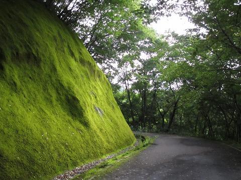 2012_0715uminohi0001.jpg