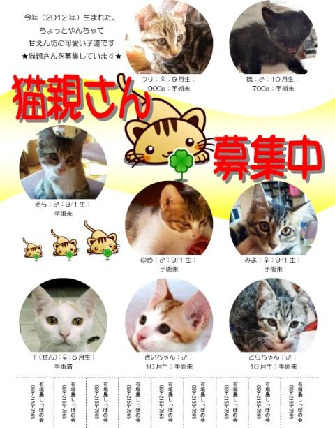 猫親チラシ201212 - コピー